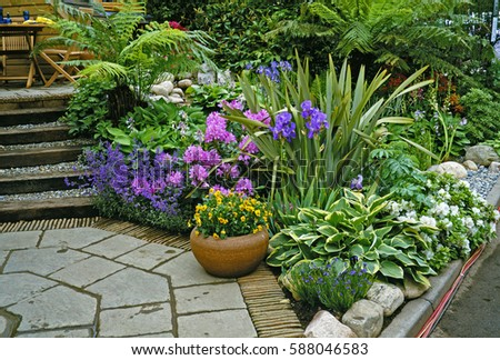A colourful Patio Garden with planted container #588046583