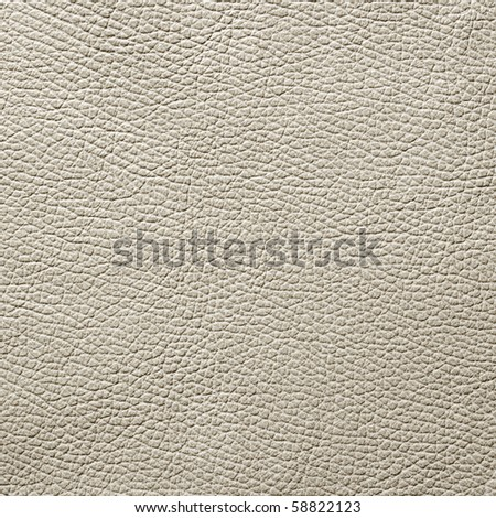 leather texture background #58822123