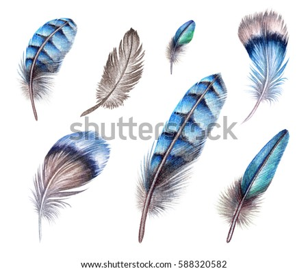watercolor illustration, blue boho feather, easter clip art, tribal assorted design elements, isolated on white background