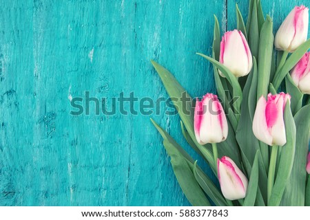 Bouquet of Tulips on turquoise rustic wooden background with copy space for message. Spring flowers. Greeting card for Valentine's Day, Woman's Day and Mother's Day holidays. Top view.
