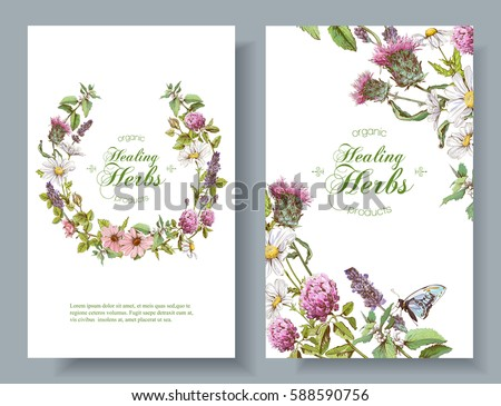 Vector vertical wild flowers and herbs banners. Design for herbal tea, natural cosmetics, perfume, health care products, aromatherapy. Can be used as boho style wedding invitation. With place for text #588590756