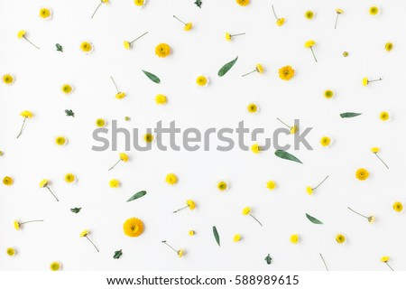 Flowers composition. Frame made of various yellow flowers on white background. Easter, spring, summer concept. Flat lay, top view, copy space #588989615