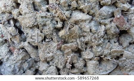 stones #589657268