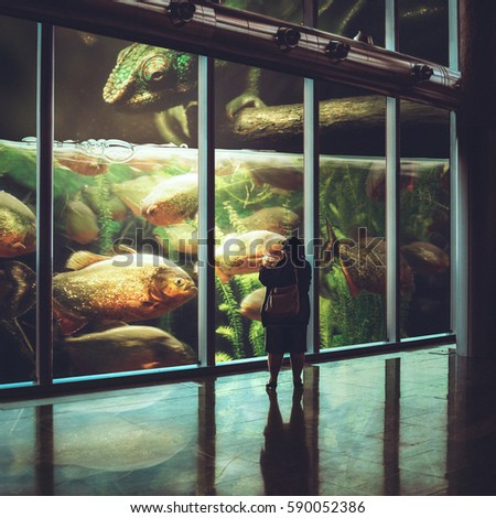 Photo manipulation with surreal aquarium with piranha and a huge chameleon at top and woman make a pictures with a fish jump out from a phone