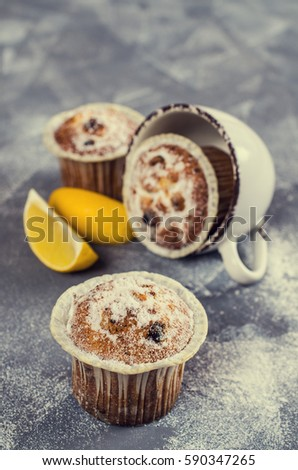 Muffins with raisins and powdered sugar. Selective focus. #590347265