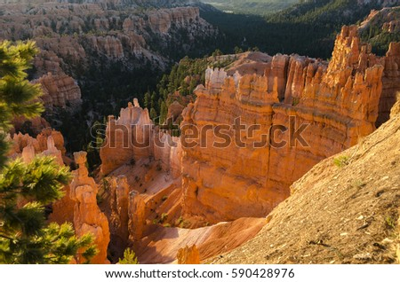 Bryce Canyon National Park in Utah #590428976