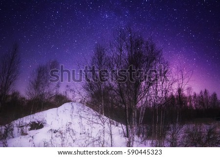Beautiful night sky in forest #590445323