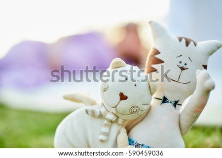 cute toy kittens. symbol of loving husband and wife in marriage. love, tenderness and care in relationships, family values. womans day, mothers day and valentines day concept.