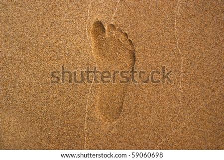 Single footprint on the sand #59060698