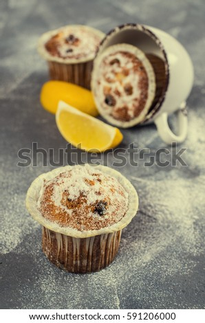 Muffins with raisins and powdered sugar. Selective focus. #591206000