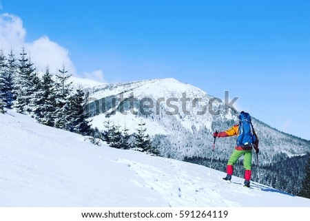 Winter hiking in the mountains on snowshoes with a backpack and tent. #591264119