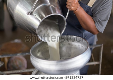 Worker pouring milk into a container for transform. Royalty-Free Stock Photo #591334727