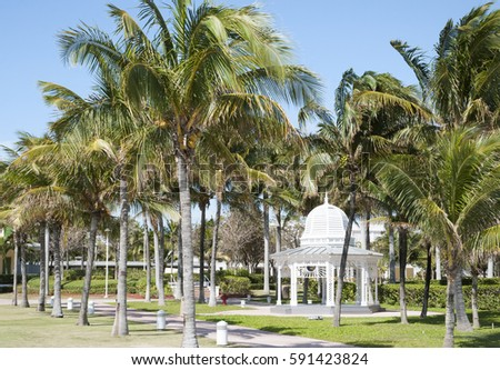The wooden gazebo surrounded by palms in Freeport town on Grand Bahama Island. #591423824