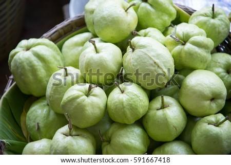 Guava fruit fresh on a basket for sale #591667418