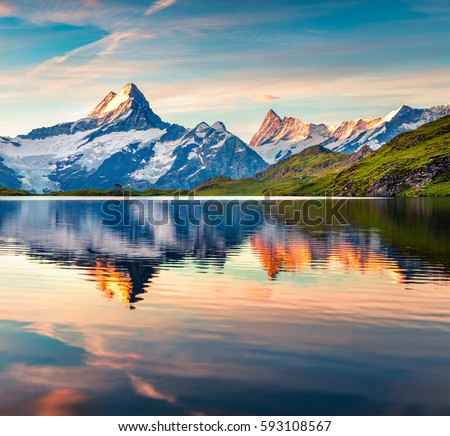 Colorful summer sunrise on Bachalpsee lake with Schreckhorn peak on background. Picturesque morning scene in the Swiss Bernese Alps, Switzerland, Europe. Beauty of nature concept background. #593108567