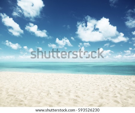 sunny tropical beach and perfect sky #593526230