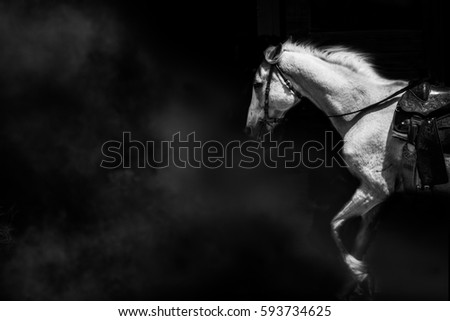 Horse fantasy beautiful white action concept power stilllife,cloud isolated black on background #593734625