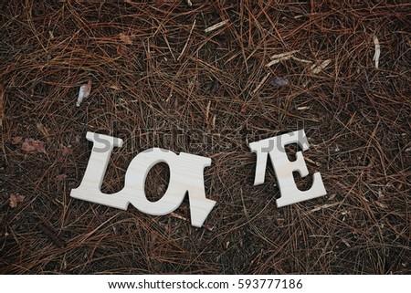 Wording love in pine forest ,broken heart concept #593777186