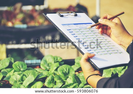 Young women Asian farmers  check the quality control of the Agriculture food product new generation farmer concept. Royalty-Free Stock Photo #593806076