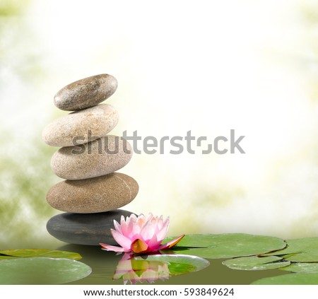 Image of stones and lotus flower on the water #593849624