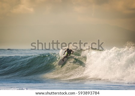 Surfing the waves themed photo.