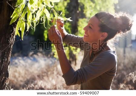 Young biologist examin eucalyptus leaf. #59409007