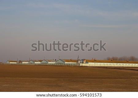 farm #594101573