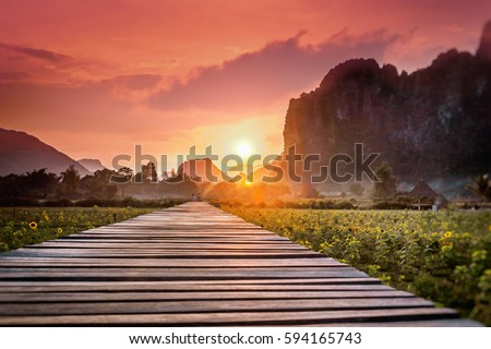 Wooden footpath in a field at sunset. Mountain landscape, Laos, Asia