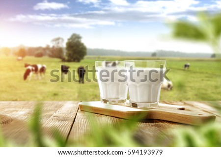 fresh milk and spring time  Royalty-Free Stock Photo #594193979