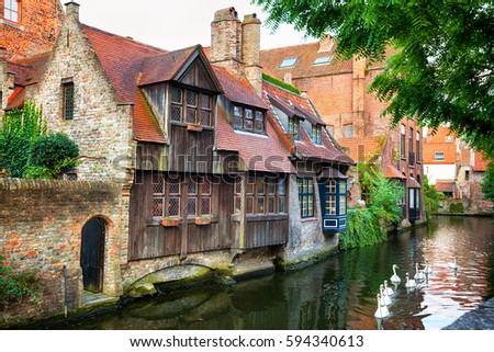 Medieval houses on a canal with white ducks in Bruges, Belgium #594340613