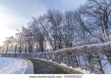 Winter park in Kiev #594440363