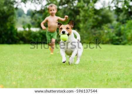Dog with ball running from child  playing catch-up game #596137544