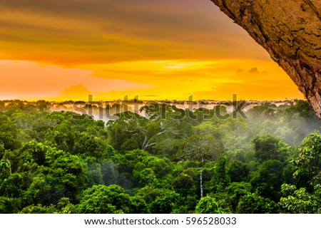 sunset over the trees in the brazilian rainforest of Amazonas Royalty-Free Stock Photo #596528033