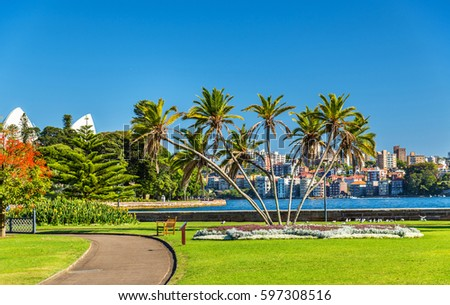 The Royal Botanical Garden of Sydney - Australia, New South Wales #597308516