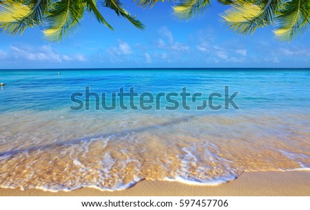 Caribbean sea and palm leaves. #597457706