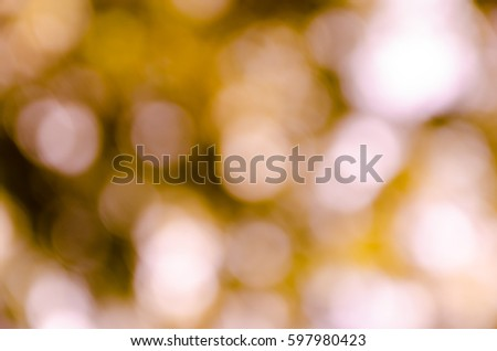 bokeh background from nature under tree shade #597980423