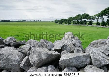 Lush, green pasture and stone walls of rural Ireland #59832547