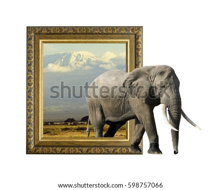 Elephant in old wooden frame with 3d effect