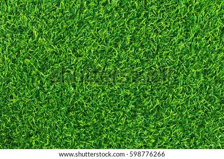 Green grass background texture .top view.  #598776266