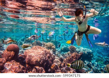 Snorkeler diving along the brain coral. Maldives Indian Ocean coral reef. #599347175