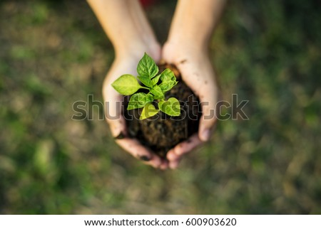 Hand holding sprout for growing nature Royalty-Free Stock Photo #600903620