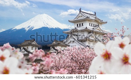 Himeji Castle and full cherry blossom, with Fuji mountain background, Japan