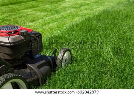 Lawn mower on green grass  #602042879