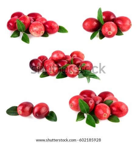 Collection of cranberries on white #602185928