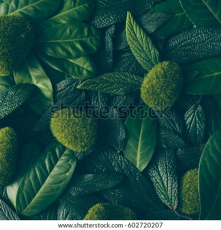 Creative layout made of green leaves. Flat lay. Nature concept #602720207