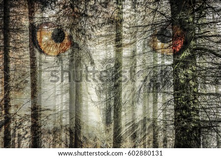 Enchanted forest of watchful eyes #602880131