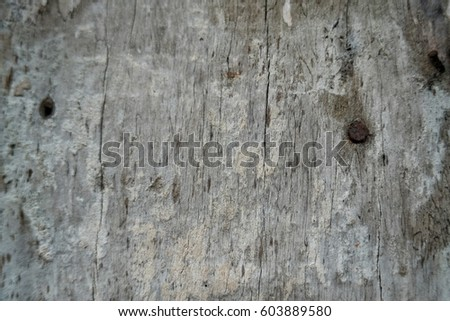 old wood blackground , wood texture #603889580