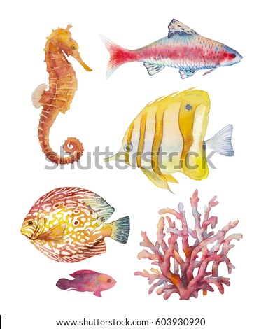 Watercolor tropical fish and corals set. Hand drawn underwater animal illustration of coral reef fishes and sea horse isolated on white background. Artistic natural collection