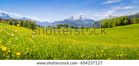 Panoramic view of idyllic mountain scenery in the Alps with fresh green meadows in bloom on a beautiful sunny day in springtime, National Park Berchtesgadener Land, Bavaria, Germany Royalty-Free Stock Photo #604237127