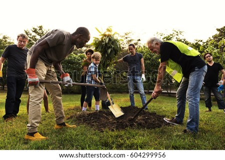 Group of Diverse People Digging Hole Planting Tree Together Royalty-Free Stock Photo #604299956